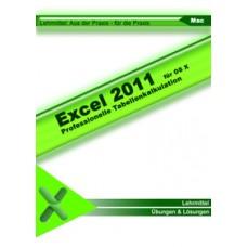 Mac Excel 2011 (Schullizenz)