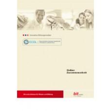 ECDL-Standard Online Zusammenarbeit